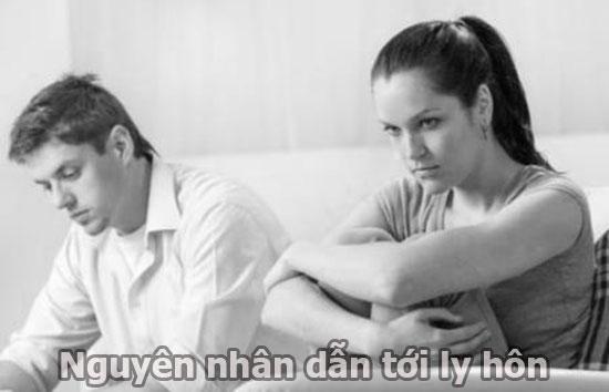 Nguyên nhân dẫn tới ly hôn