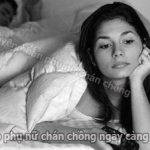 Nguyên nhân khiến phụ nữ chán chồng ngày càng nhiều